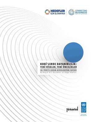 KOBİlerde Dayanıklılık Yeni Riskler Yeni Öncelikler Raporu
