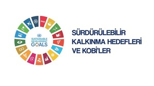 İş Dünyası ve Sürdürülebilirlik: Toplumsal Cinsiyet Eşitliği