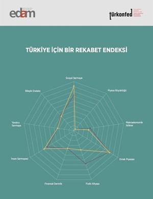 Türkiye İçin Bir Rekabet Endeksi