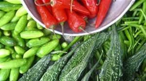 TZOB: Sebze fiyatları düştü