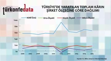 Türkiye'de Yaratılan Toplam Karın Şirket Ölçeklerine Göre Dağılımı